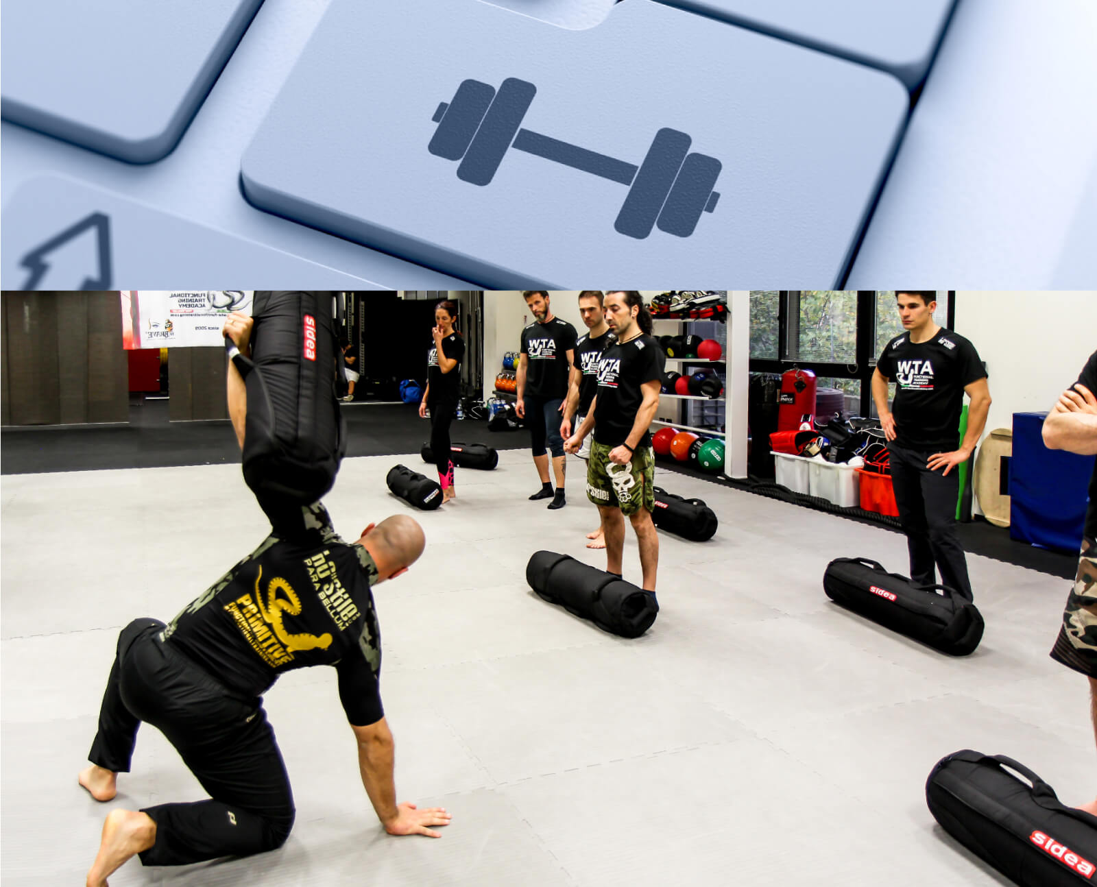 Functional Training Courses